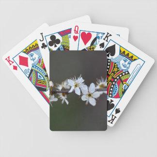 Flowers of a Blackthorn bush Poker Deck