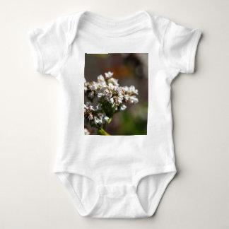 Flowers of a Buckwheat plant (Fagopyrum esculentum Baby Bodysuit