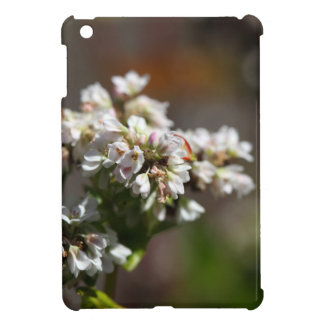 Flowers of a Buckwheat plant (Fagopyrum esculentum Cover For The iPad Mini