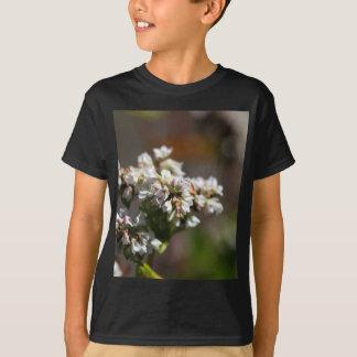 Flowers of a Buckwheat plant (Fagopyrum esculentum T-Shirt