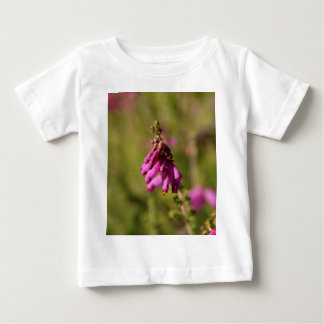 Flowers of a Dorset heath (Erica cilaris) Baby T-Shirt