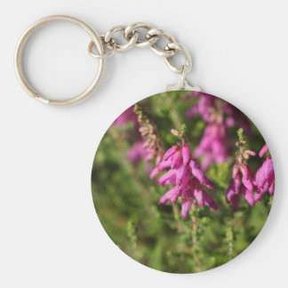 Flowers of a Dorset heath (Erica cilaris) Key Ring