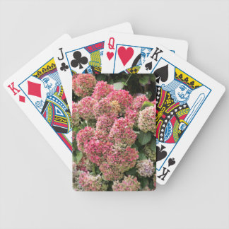 Flowers of a French hydrangea (Hydrangea macrophyl Bicycle Playing Cards