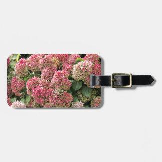 Flowers of a French hydrangea (Hydrangea macrophyl Luggage Tag