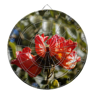 Flowers of an African tuliptree Dartboard