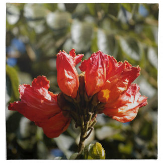 Flowers of an African tuliptree Napkin