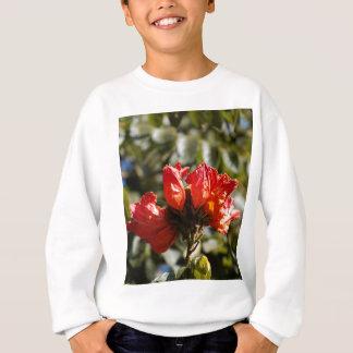 Flowers of an African tuliptree Sweatshirt