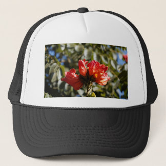 Flowers of an African tuliptree Trucker Hat