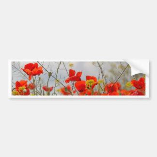 Flowers of common poppy in a field. bumper sticker