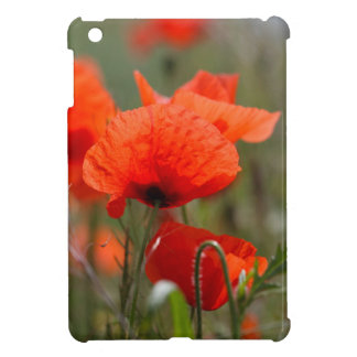 Flowers of common poppy in a field. case for the iPad mini