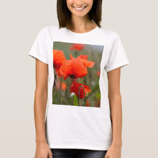 Flowers of common poppy in a field. T-Shirt