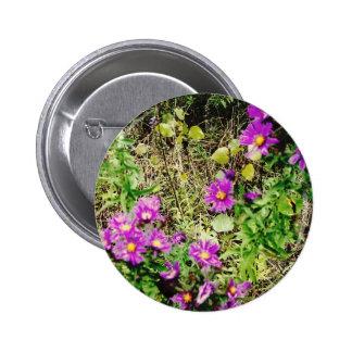 Flowers of Purple Button