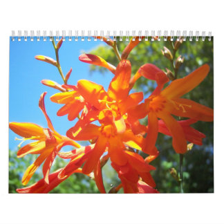 Flowers of Southern Oregon and Northern California Calendar