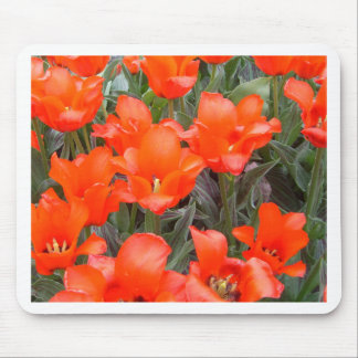 """""""Flowers of Spring""""  CricketDiane Art Photography Mouse Pads"""