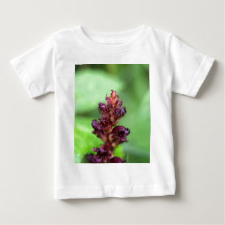 Flowers of the broomrape Orobanche gracilis Baby T-Shirt