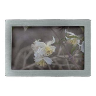 Flowers of Traveller Joy (Clematis brachiata) Belt Buckles
