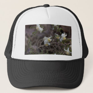 Flowers of Traveller Joy (Clematis brachiata) Trucker Hat