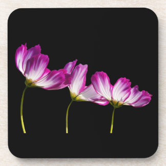 Flowers On Black Coaster