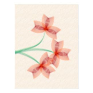 Flowers on Parchment Postcard