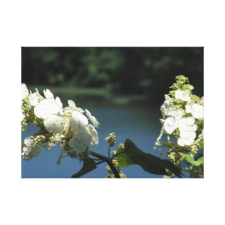 Flowers on the Lake Canvas Print