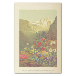Flowers on the mountain tissue paper