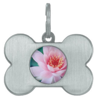 flowers pet name tags