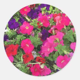 Flowers Photo Classic Round Sticker