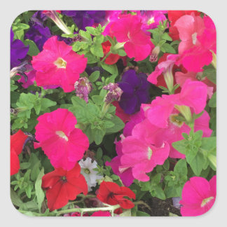 Flowers Photo Square Sticker