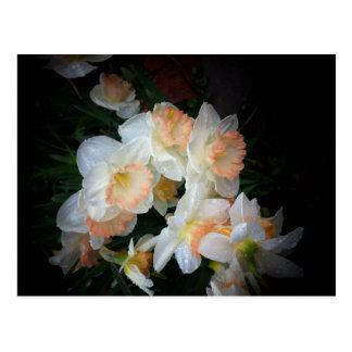 flowers postcard