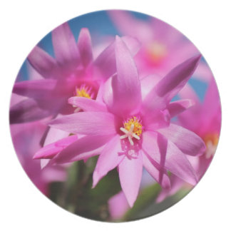 Flowers So Pink Party Plate