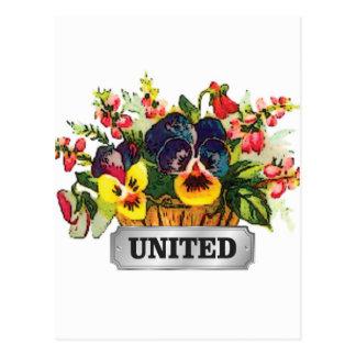 flowers united postcard
