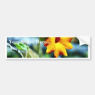 Flowers Vines Plants Pods Car Bumper Sticker