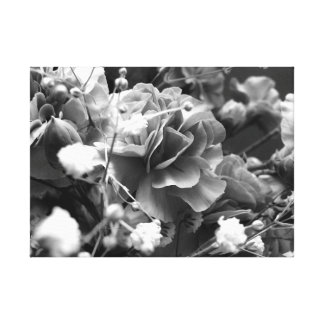 Flowers with Babies Breath in Black and White Canvas Print