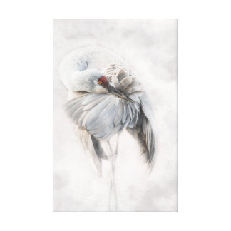 Fluffing My Feathers - Fine Art Photography Canvas Print