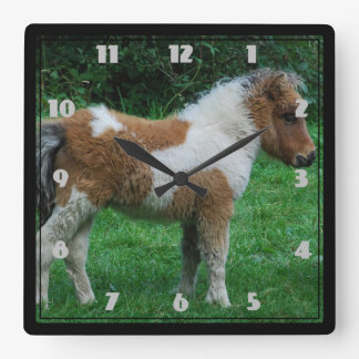 Fluffy Adorable Dartmoor Pony Square Wall Clock