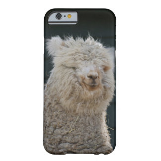 Fluffy Alpaca Barely There Phone Case