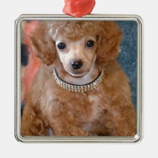 Fluffy Apricot Poodle Puppy Dog Metal Ornament