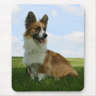 Fluffy Cardigan Welsh Corgi Mouse Pad