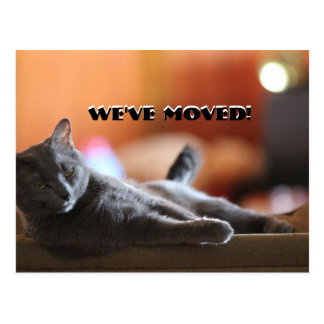 Fluffy cat saying we've have moved new address postcard