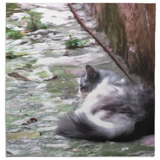 Fluffy cat sleeping crouch on the floor napkin