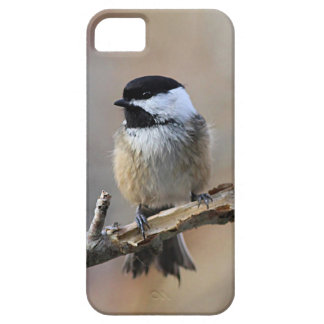 Fluffy chickadee case for the iPhone 5