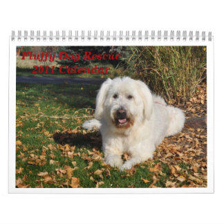 Fluffy Dog Rescue Calendar