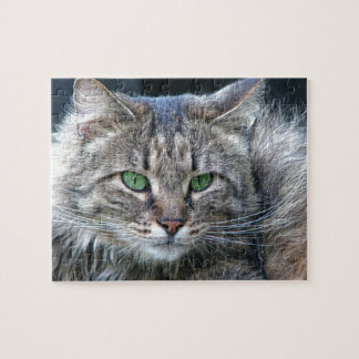 Fluffy Green-Eyed Tiger Kitty Cat Jigsaw Puzzle