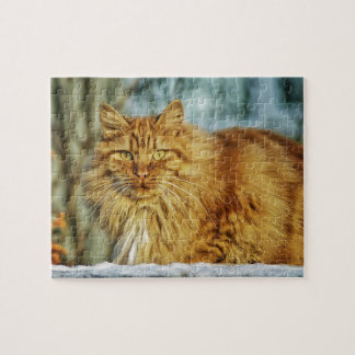 Fluffy Long-Haired Orange Manly Cat Jigsaw Puzzle