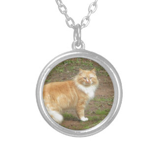 Fluffy Orange and White Kitty Round Pendant Necklace