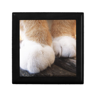 Fluffy paws gift box