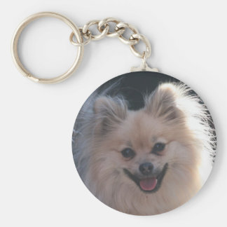 fluffy pomeranian dog key ring