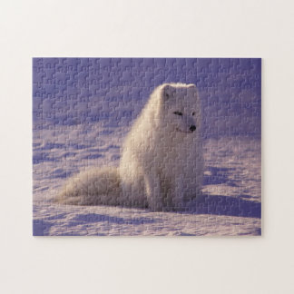 Fluffy Snow Fox Puzzle
