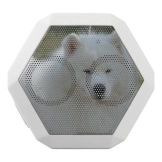 Fluffy White American Eskimo Dog White Boombot Rex Bluetooth Speaker
