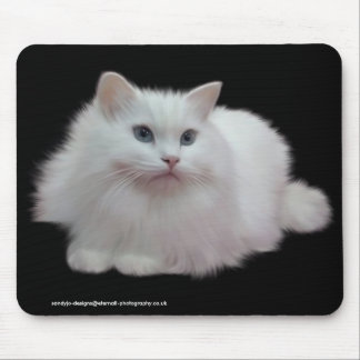 Fluffy White Cat Mouse Mats